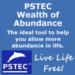 Wealth Of Abundance